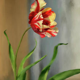 Lois Bryan - Red And Yellow Parrot Tulip