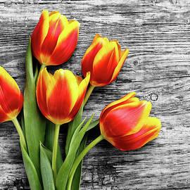 Serhii Kucher - Red And Yellow Tulips