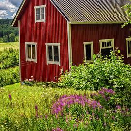 Debra and Dave Vanderlaan - Red Barn on a Summer Day