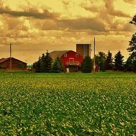 Curtis Tilleraas - Red Barn Under a Cloudy Sky