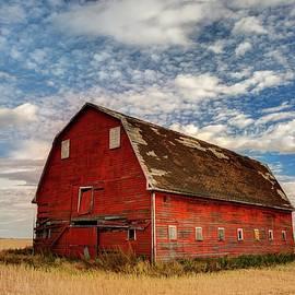 Red Barn Under a Confetti Sky  by Harriet Feagin