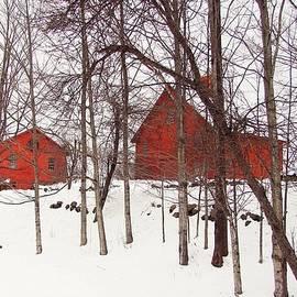 Betsy Zimmerli - Red Barns
