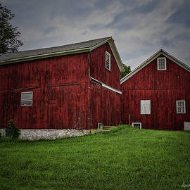 Red Barns in Newton by Louise Reeves