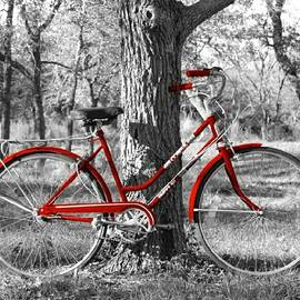 Red Bicycle Ii
