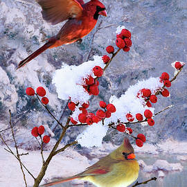 Spadecaller - Red Birds of Christmas