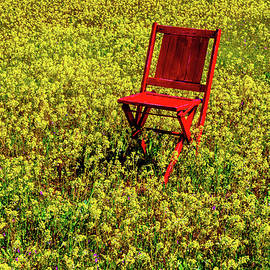 Red Chair In Firld Of Yellow Flowers - Garry Gay