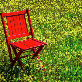 Red Chair In Yellow Flowers - Garry Gay