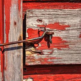 Red Door Latch by David Matthews