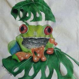 Judit Szalanczi - Red-eyed Tree Frog