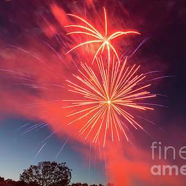 Red Firework Celebration by Jennifer White