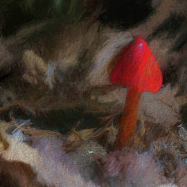 Marvin Spates - Red Forest Mushroom