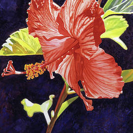 RED HIBISCUS - David Lloyd Glover