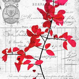 Cathy Kovarik - Red Leaves