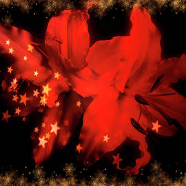 Johanna Hurmerinta - Red Lilies With Gold Snow 1