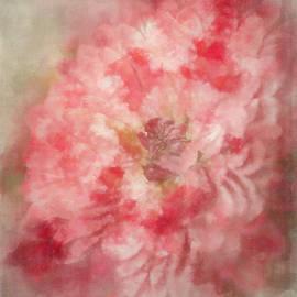 Teresa Wilson - Red Mum Abstract