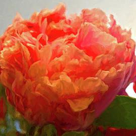 Sandi OReilly - Red Orange Shaded Peony