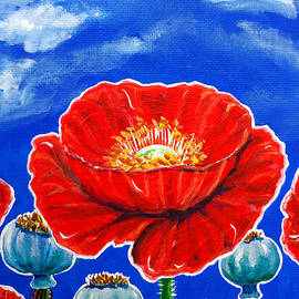 Jackie Carpenter - Red Poppies and Pods Cloudy Sky Flowers Wildflowers