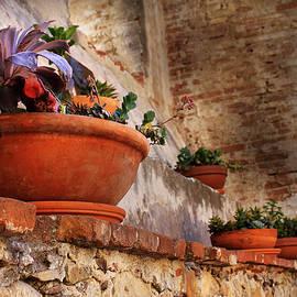 Red Pot by Maria Reverberi