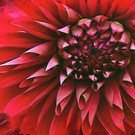 Red Rebellion by Vanessa Thomas