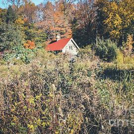 Colleen Kammerer - Red Roof Cottage - Sunnyside