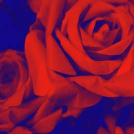 Susan Maxwell Schmidt - Red, Rose and Blue