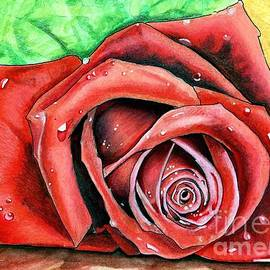 Red Rose by Bill Richards