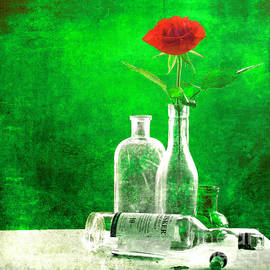 Hal Halli - Red Rose Green World