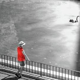 Red Shirt, Black Swanla Seu, Palma De