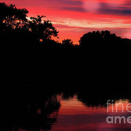 Red Silhouette Sunset by Colleen Kammerer