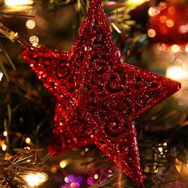 Red Star Glitters so Bright by Toni Hopper
