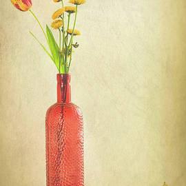 Jerri Moon Cantone - Red Still Life