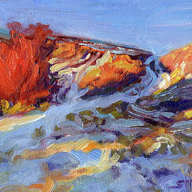 Redbush by Steve Henderson