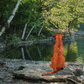 Jack Zulli - Reflecting