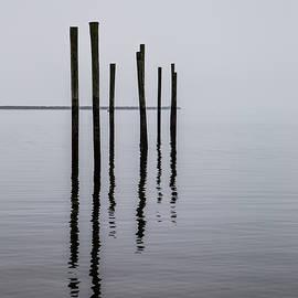Reflecting Poles by Karol Livote
