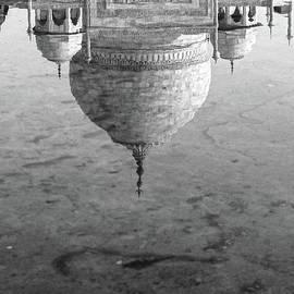Reflection - Taj Mahal by Neha Gupta