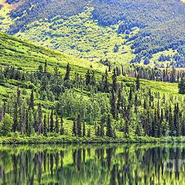 Chuck Kuhn - Reflections Alaska II