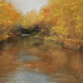 Gary Sluzewski - Reflections