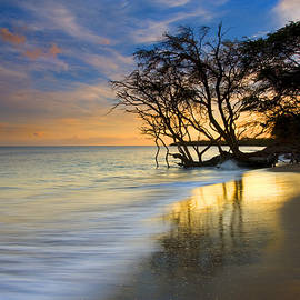 Reflections of PAradise by Mike  Dawson
