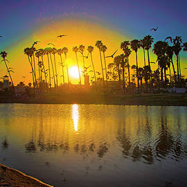 Reflections of Santa Barbara by Lynn Bauer