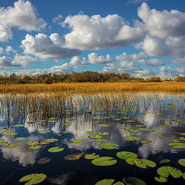 Reflections over the Marsh by Debra and Dave Vanderlaan