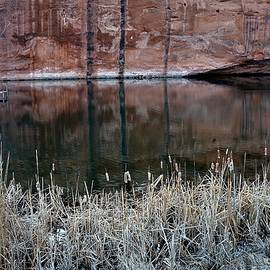 Reflective Pool in the Desert by Heidi Fickinger