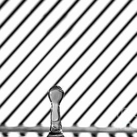 Refraction Column by Steve Purnell