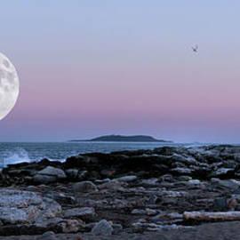 Sandra Huston - Reid State Park Super Moon Panorama