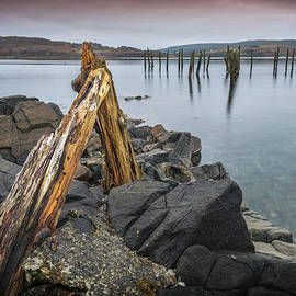 Peter OReilly - Remains of the Pier