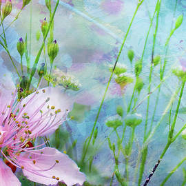 Carla Parris - Remembering Monet