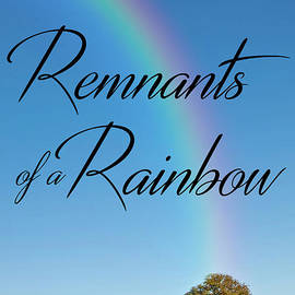 Mike Nellums - Remnants of a Rainbow book cover