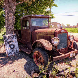 REO Speed Wagon Plant Sale by Leslie Montgomery
