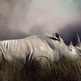 Donna Kennedy - Resting Rhino