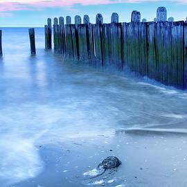 Kristia Adams - Return To The Bay