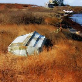 Mike Nellums - Rhode Islandscape 1